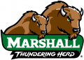 Marshall Thundering Herd 2001-Pres Alternate Logo 10 iron on transfer