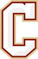 College of Charleston Cougars 2013-Pres Secondary Logo decal sticker