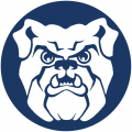 Butler Bulldogs 1990-2014 Secondary Logo iron on transfer