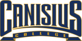 Canisius Golden Griffins 2006-Pres Wordmark Logo iron on transfer