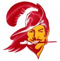 tampa bay buccaneers crystal logo iron on sticker