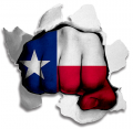hulk Texas State Flag decal sticker