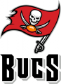 Tampa Bay Buccaneers 2014-Pres Wordmark Logo 01 iron on transfer