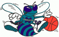 Charlotte Hornets 1989-2002 Alternate Logo decal sticker