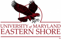 Maryland-Eastern Shore Hawks 2007-Pres Alternate Logo 02 decal sticker