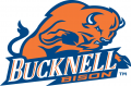 Bucknell Bison 2002-Pres Primary Logo iron on transfer