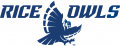 Rice Owls 2017-Pres Alternate Logo 02 iron on transfer