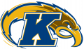 Kent State Golden Flashes 2000-Pres Alternate Logo decal sticker