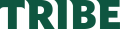 William and Mary Tribe 2018-Pres Wordmark Logo 01 iron on transfer