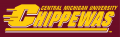 Central Michigan Chippewas 1997-Pres Wordmark Logo iron on transfer