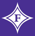 Furman Paladins 1981-2012 Alternate Logo iron on transfer