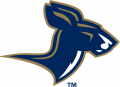 Akron Zips 2002-2007 Alternate Logo 02 decal sticker