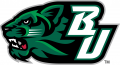 Binghamton Bearcats 2001-Pres Secondary Logo 02 decal sticker