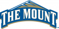 Mount St. Marys Mountaineers 2004-Pres Primary Logo decal sticker