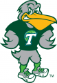 Tulane Green Wave 2014-Pres Mascot Logo iron on transfer