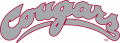 Washington State Cougars 1995-2010 Wordmark Logo iron on transfer