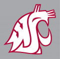 Washington State Cougars 1995-Pres Alternate Logo iron on transfer
