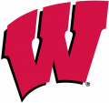 Wisconsin Badgers 1991-Pres Primary Logo iron on transfer