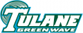 Tulane Green Wave 1998-2013 Wordmark Logo 03 iron on transfer