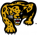 IUPUI Jaguars 1998-2007 Secondary Logo 02 decal sticker
