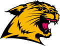 Northern Michigan Wildcats 1993-2015 Secondary Logo iron on transfer