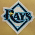 Tampa Bay Rays Logo Embroidered Iron On Patches