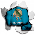 hulk Oklahoma State Flag decal sticker