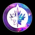 galaxy winnipeg jets iron on stickers