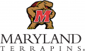 I-M_Maryland Terrapins 2001-Pres Alternate Logo 03 iron on transfer