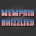 Memphis Grizzlies American Captain Logo iron on transfer