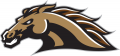 Western Michigan Broncos 1998-2015 Secondary Logo 01 iron on transfer