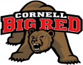 Cornell Big Red 1998-2001 Primary Logo iron on transfer