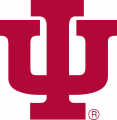 Indiana Hoosiers 1976-1981 Primary Logo iron on transfer