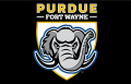 Purdue Fort Wayne Mastodons 2018-Pres Primary Dark Logo 01 decal sticker