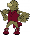 Denver Pioneers 1999-2003 Mascot Logo decal sticker