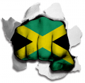 hulk JAMAICA Flag decal sticker