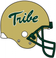 William and Mary Tribe 2009-2015 Helmet Logo iron on transfer