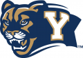 Brigham Young Cougars 2005-2014 Alternate Logo iron on transfer