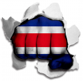 hulk COSTA RICA Flag decal sticker