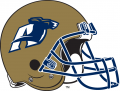 Akron Zips 2002-Pres Helmet decal sticker