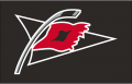 Carolina Hurricanes 2008 09-2016 17 Jersey Logo decal sticker